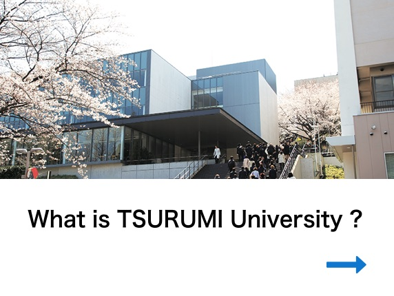 What is TSURUMI University ?